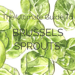 The Ultimate Guide to Brussels Sprouts