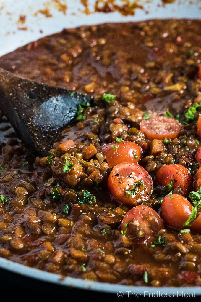 I promise you won't miss the meat in this delicious Lentil Bolognese. By caramelizing the onions, carrots, peppers, and tomato paste the pasta sauce becomes rich and deeply flavored. It's an easy to make and delicious vegan dinner recipe.   theendlessmeal.com